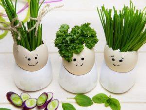 Oeufs jardiniere