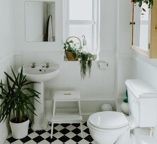 Salle de bains zéro dechet